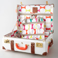 feat-kate-spade-luggage